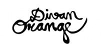 VSLR_Logo Divan Orange